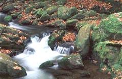 greenbrier cascades waterfall